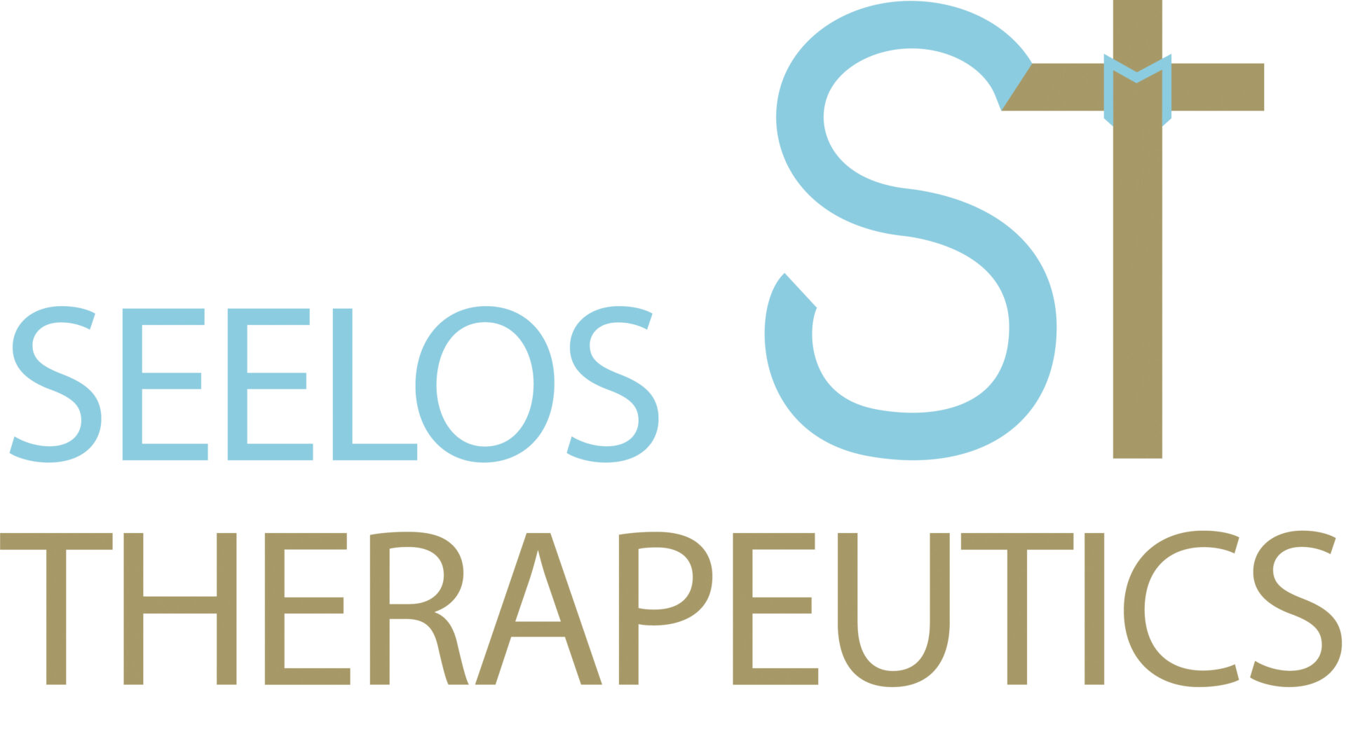 Seelos_full-logo-and-icon-color_2-1920x1058.jpg