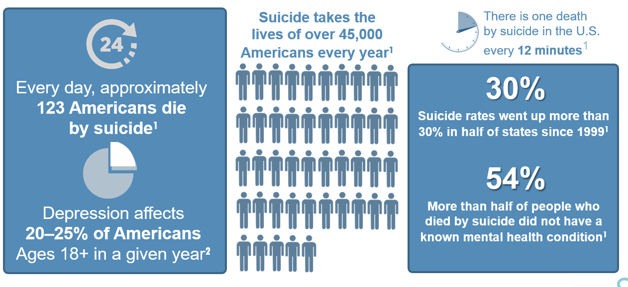 Suicide Graphic Update